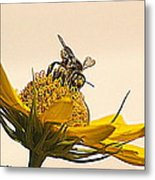 Bee Utiful Day Metal Print