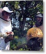 Beekeepers Collecting Swarming Honeybees Metal Print