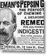 Beemans Pepsin Gum, 1895 Metal Print