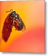Bee's World Metal Print