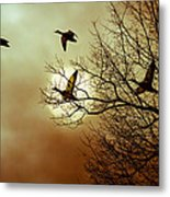 Before A Winter Sky Metal Print by Bob Orsillo