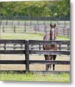 Behind Bars Metal Print