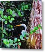 Behind The Tree Metal Print