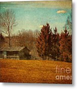 Behind The Village Metal Print