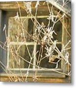 Beige Window At The End Of Winter Metal Print