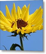 Bright Yellow Happy Sunshine Metal Print