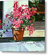 Bel-air Bougainvillea Pot Metal Print by David Lloyd Glover