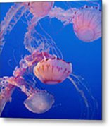 Below The Surface 3 Metal Print