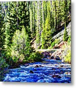 Belt Creek Metal Print