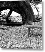 Bench By The Tree Metal Print