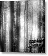 Bench In Michigan Woods Metal Print