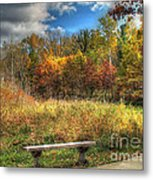 Benched In Autumn Metal Print