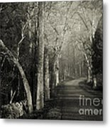 Bend In The Road 2 Metal Print