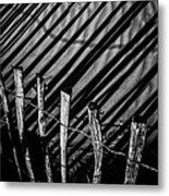 Benone - Shadow Fencing Metal Print