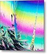 Benzoic Acid Microcrystals Coloful Abstract Art Metal Print