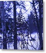 Berkshires Winter 8 - Massachusetts Metal Print