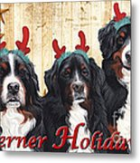 Berner Holiday Metal Print