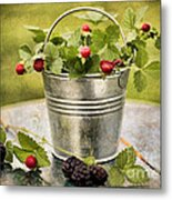 Berries Metal Print by Darren Fisher