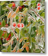 Winter Berries On Ice Metal Print