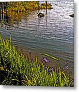 Berry Hill Pond In Gros Morne Np-nl Metal Print
