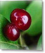 Berry Together Metal Print