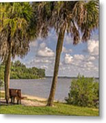 Beside The Shore Metal Print