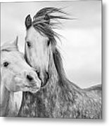 Best Friends I Metal Print