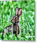 Better Get Started On Those Easter Eggs Metal Print