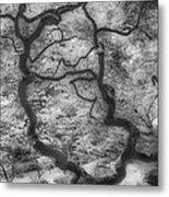 Between Black And White-16 Metal Print