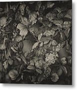 Between Death And Life Metal Print