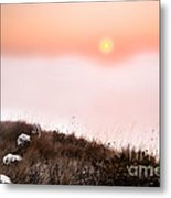 Between Rocks And The Sunrise Metal Print