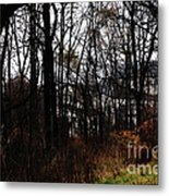 Beyond The Layer Metal Print