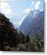 Beyond The Rhododendrons 1 Metal Print