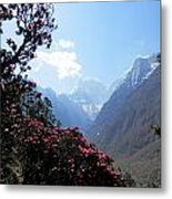 Beyond The Rhododendrons 2 Metal Print