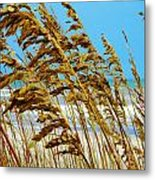 Beyond The Sea Oats Lies Eternity Metal Print by Lorraine Heath