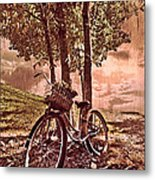 Bicycle In The Park Metal Print