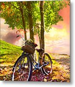 Bicycle Under The Tree Metal Print