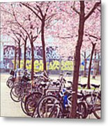 Bicycles Under The Blooming Trees. Pink Spring In Amsterdam  Metal Print