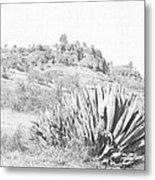 Bidwell Park Cactus Metal Print
