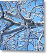 Bifurcations In White And Blue Metal Print