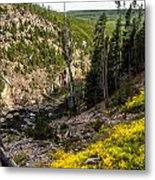 Big And Beautiful Valley Metal Print