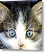 Big Blue Eyes Metal Print