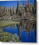Big Cottonwood Canyon  Metal Print