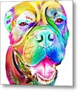 Big Dog Metal Print