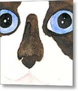 Big Eyed Cat Metal Print