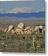 Big Granite Boulder In The Desert Metal Print