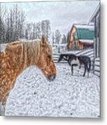 Big Horse  Little Horse Metal Print by Skye Ryan-Evans