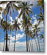 Big Island Hawaii Palm Stretch Metal Print