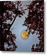 Big Old Autumn Moon Metal Print