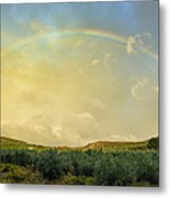 Big Rainbow Metal Print